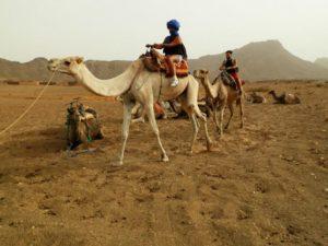 excursion desierto zagora